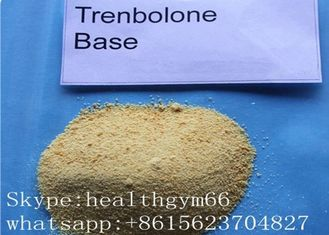 China Pharmaceutical Trenbolone Base Legal Synthetic Steroids To Burn Fat And Build Muscle supplier
