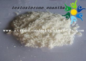 China Raw Test E Powder Testosterone Anabolic Steroid Testosterone Enanthate CAS 315-37-7 supplier