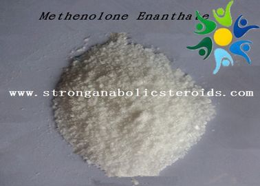 China Pharma Raw Materials Primobolan Methenolone Enanthate , Primobolan Depot CAS 303-42-4 distributor
