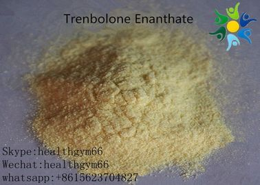 China Natural Safe Trenbolone Powder Anabolic Legal Steroids For Muscle Building distributor