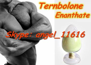 China Trenbolone Enanthate Most Powerful Nabolic Steroids Tren Enan White Powder factory