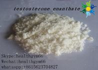 Test E Powder Testosterone Anabolic Steroid , White Crystalline Testosterone Raw Powder